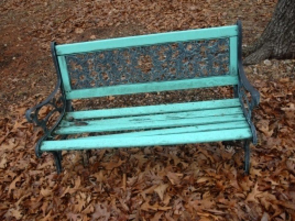 1395496_bench