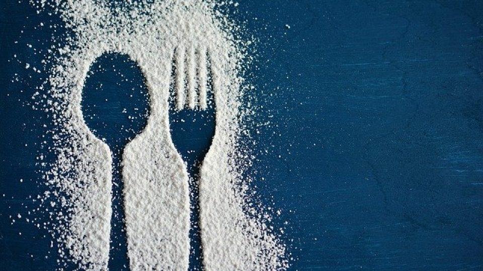 מבחר סדנאות בצק סוכר